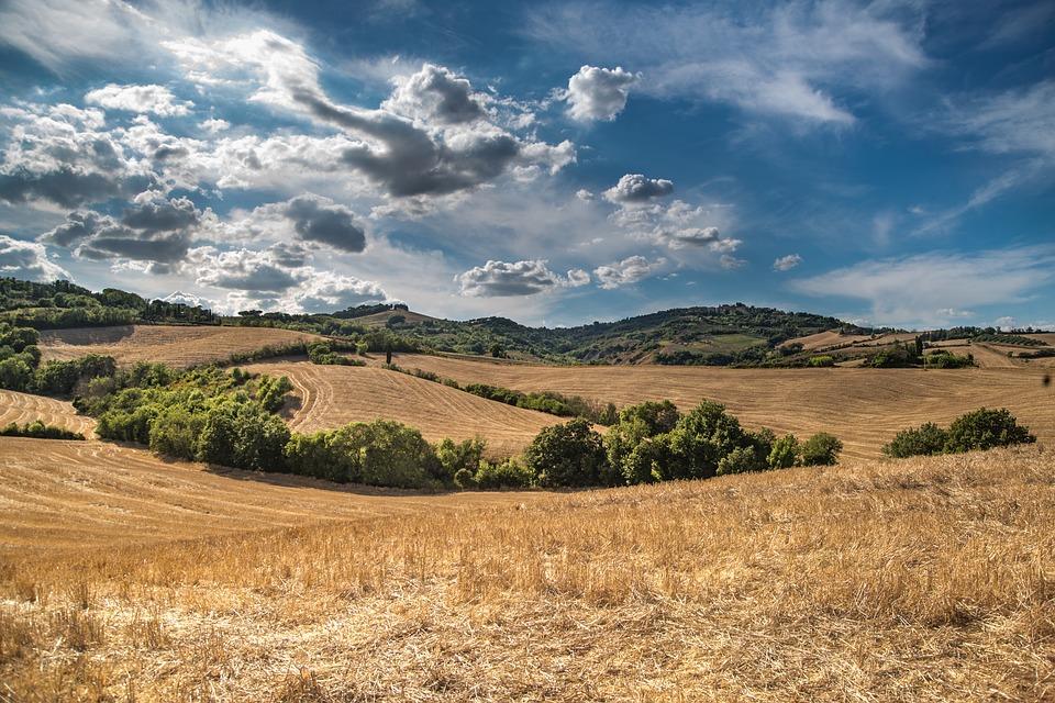 Rural Property Decision